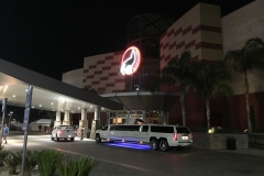 Prestige Limousine Services - Nights out on the town pic6