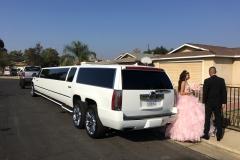 Prestige Limousine Services - Proms pic1